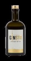 GINSTR - Stuttgart Dry Gin 44% 0,5l